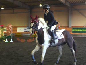 42th_shonan_horse_show06