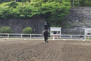 Uni_tsukui2017_04